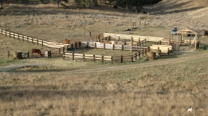 Ready for cattle! October 2014